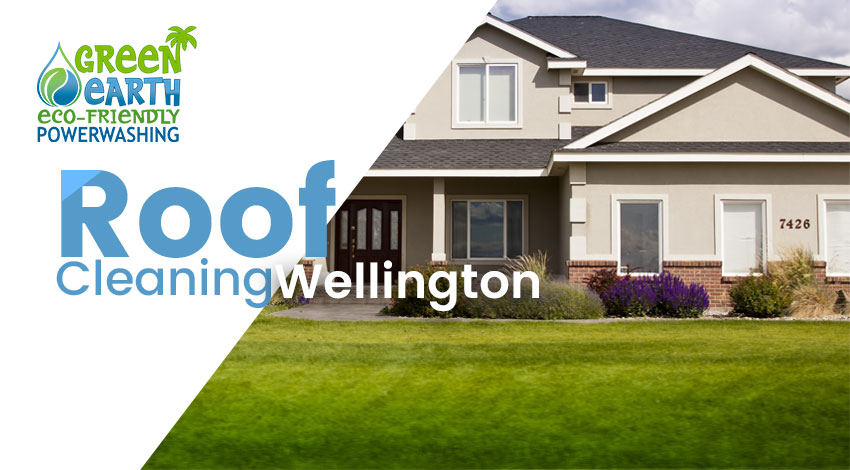 Roof Cleaning Wellington