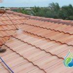 Roof Washing Company